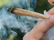 El consumo de marihuana de los padres significa más resfriados y gripe en los niños