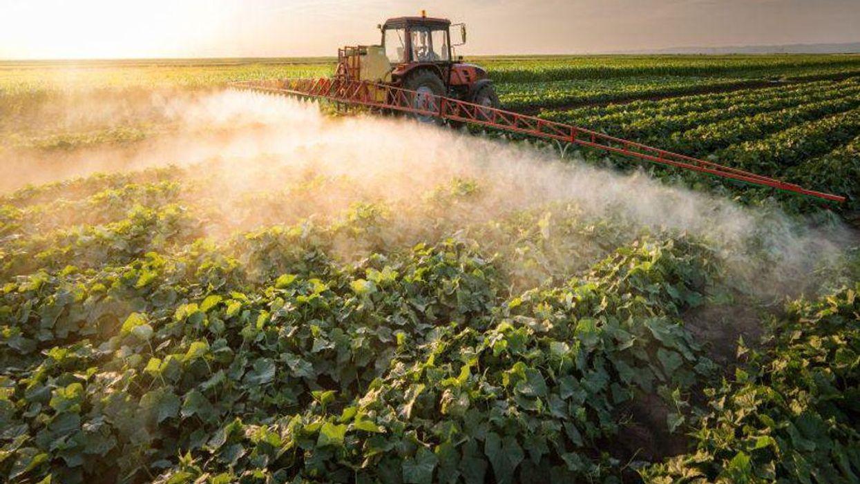 pesticide  farm