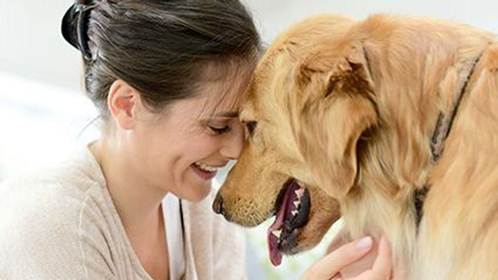 News Picture: Pet Dogs Can Alert Owners to Epileptic Seizures
