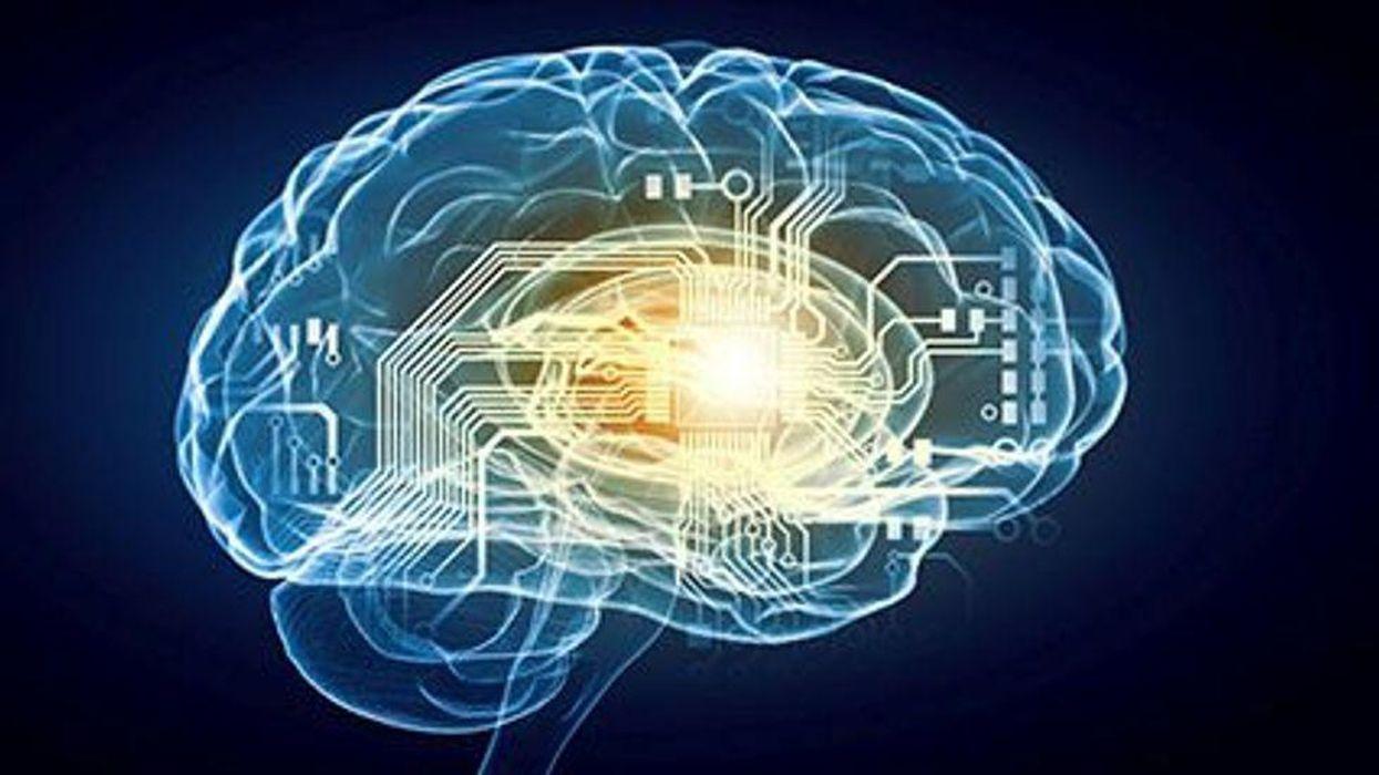 brain adhd alzheimer's