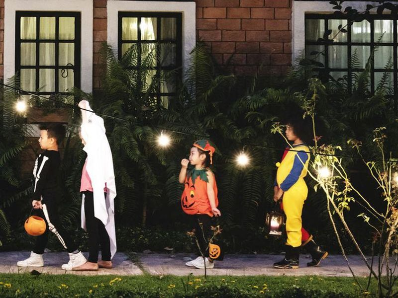 News Picture: As COVID Cases Drop, Fauci Tells Families to Enjoy Halloween