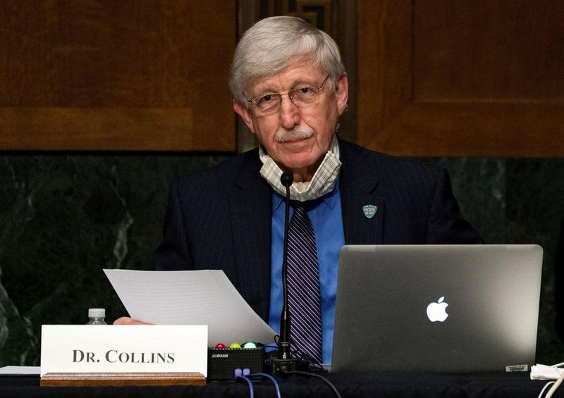 News Picture: NIH Director Dr. Francis Collins to Retire by Year's End